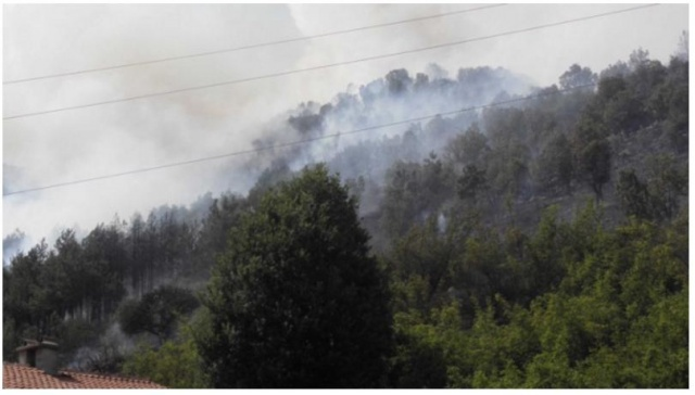 Bulgaria: Risk of Fire Remains High in Eastern Bulgaria on Sunday