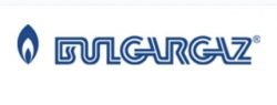 Bulgaria: Bulgaria's Public Gas Supplier to Have New CEO