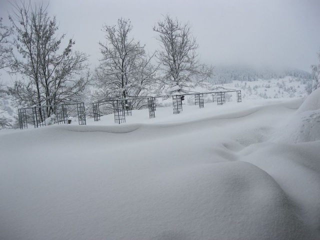 Bulgaria: Drivers' Licenses To Be Suspended for Entering Roads Closed Due To Snow