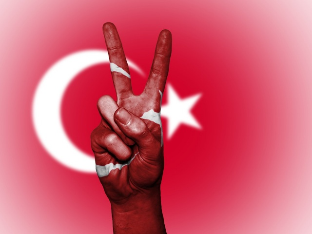 Bulgaria: Georgi Dimov: 'The Civil War in Turkey Is Knocking at the Door'