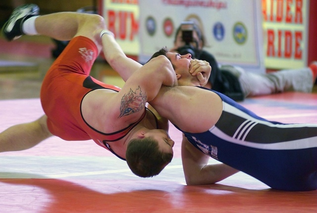 types of styles of amateur wrestling What are the different types of martial arts  wrestling throwing or takedown styles  most martial arts styles use techniques found in others in recent years .
