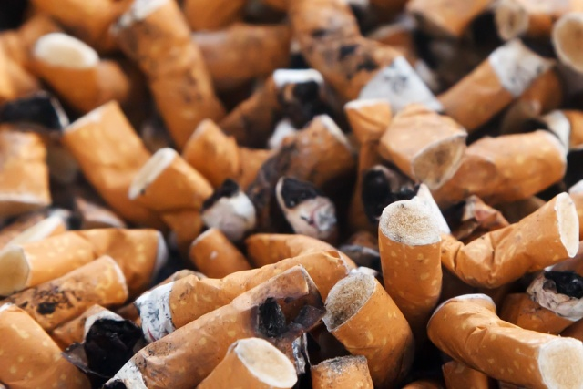 Bulgaria: World Health Organization: Tobacco Kills 7M per Year, Wreaks Environmental Havoc