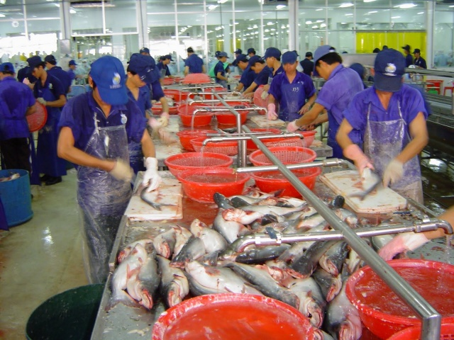 Bulgaria: Investments of over BGN 9.3 million in Fish Processing Plants