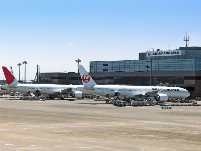 Bulgaria: A Passenger Plane Landed in Japan after a Collision with a Bird