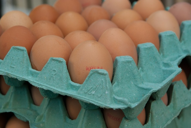 Bulgaria: Frozen Egg Melange Containing Fipronil Was Found in Bulgaria