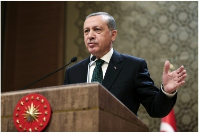 Turkey - only North Atlantic Treaty Organisation  member country really fighting IS, Erdogan says