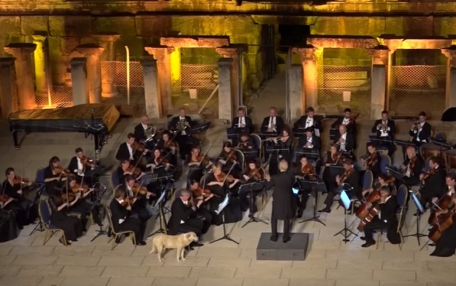 Bulgaria: Dog Enters the Stage During Performance of the Vienna Philharmonic Orchestra (Video)