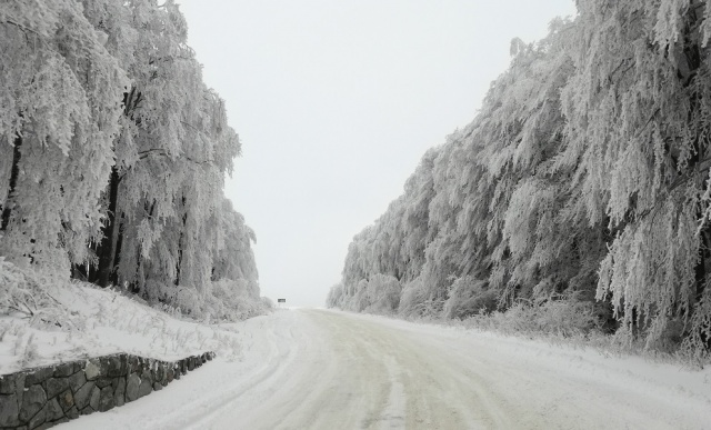 Bulgaria: The Road Infrastructure Agency has Warned of Snow and Strong Winds from Sunday