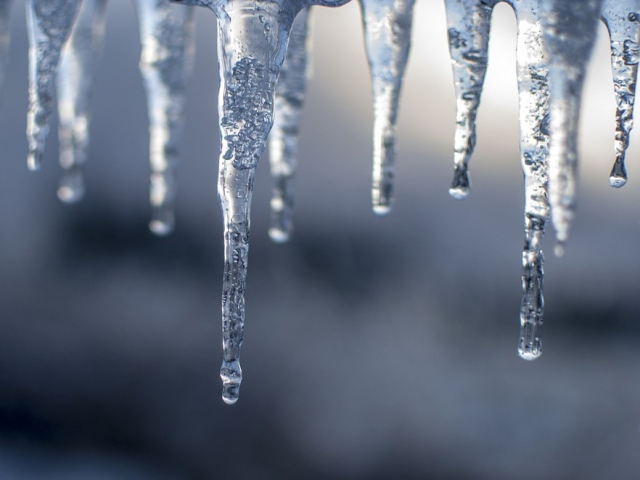 Bulgaria: Deep Freeze Kills Eight in Poland
