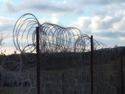 Bulgaria: Three Migrant Traffickers Arrested Near Turkish Border