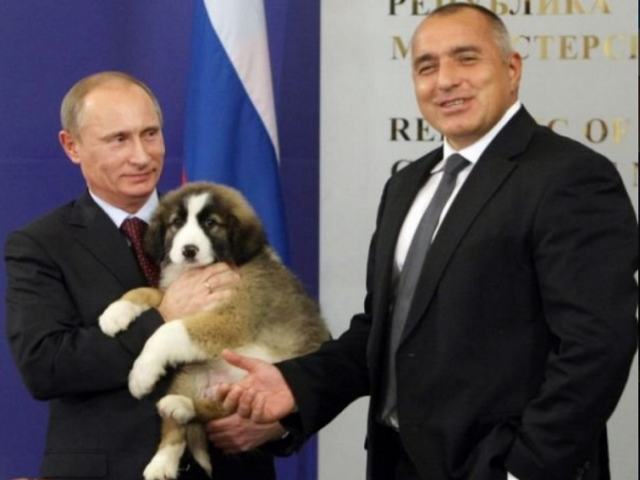 Bulgaria: Yesterday Borisov and Putin Spoke on the Phone
