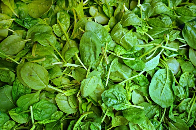 Bulgaria: Bulgaria's Food Safety Agency Recalls Bagged Spinach Over Jimsonweed Warning