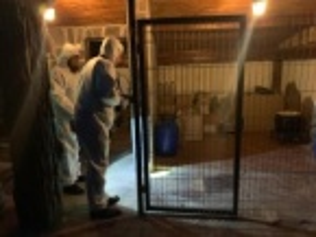 Synthetic Drug Laboratory Unveiled near Sofia