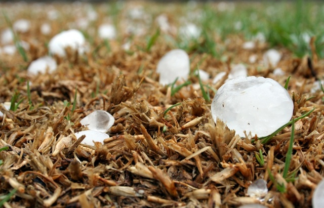 Bulgaria: The Hailstorm in Svishtov Have Caused Serious Damages