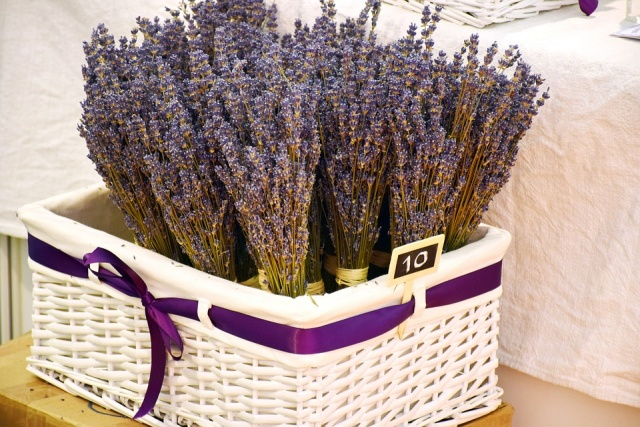 Bulgaria: The National Lavender Festival Will Take Place on Saint John's Eve (Enyovden)