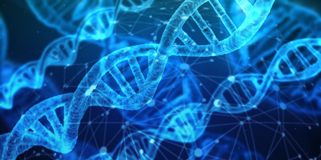 Bulgaria: Scientists Accidentally Reversed the Aging Process