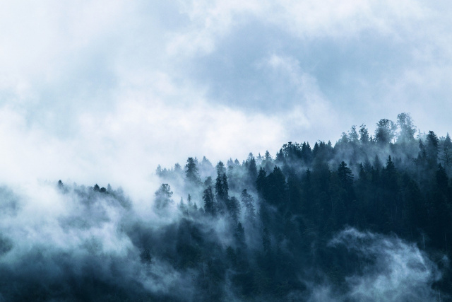 Bulgaria: Weather Forecast: Foggy and Cloudy
