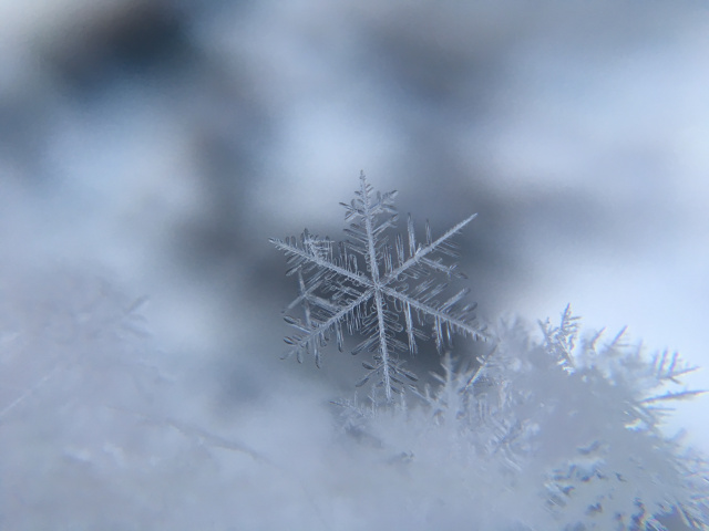 Bulgaria: Weather Forecast: Cloudy and Rainy, in the Mountainous Areas, the Rain Will Turn to Snow