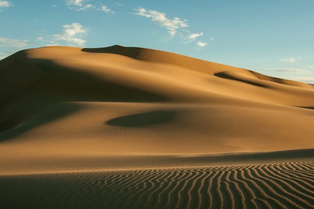 Bulgaria: A Woman Survived 12 Days in the Desert