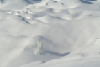 Avalanche Killed Two People and Injured Three others in the United States