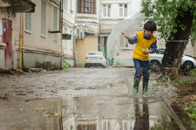 Bulgaria: Weather in Bulgaria: The Week Starts with Afternoon Rain