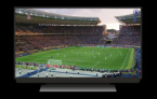 Watching Sports Events - Should We Do It From the Stadiums or From Home?
