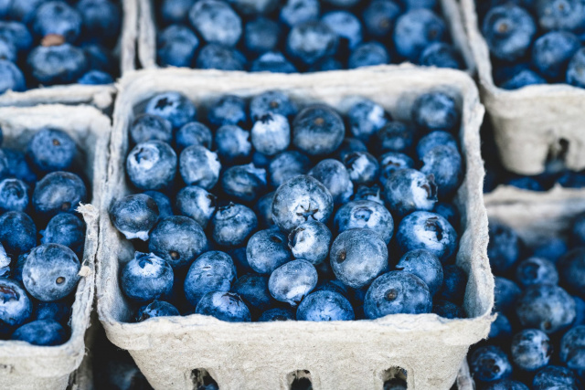 Bulgaria: 40 kg of Radioactive Blueberries From Chernobyl Were Seized by Ukrainian Border Patrol