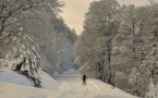 First Snow Will Fall over Bulgaria on 21 November
