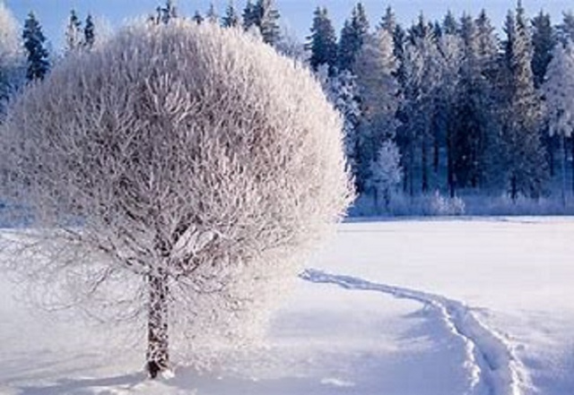 Bulgaria: Weather in Bulgaria: Cold and Snowy