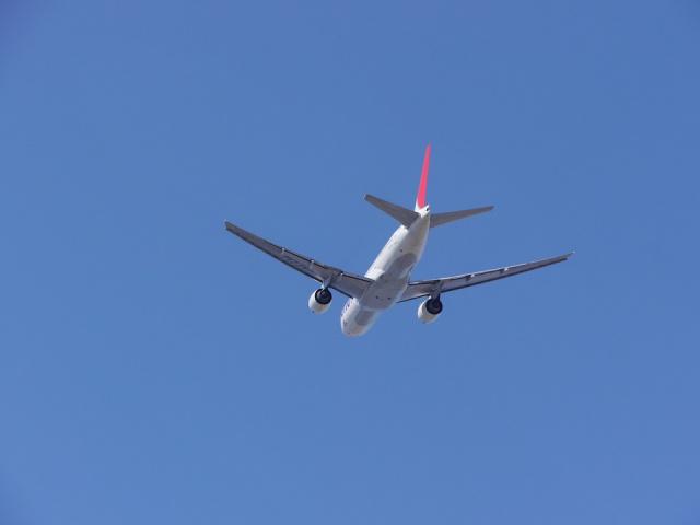 Bulgaria: Russia Resumes its Regular Flights to Bulgaria